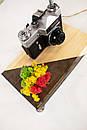 Настільна лампа Pride&Joy з вінтажним фотоаппаратом та мохом, фото 7