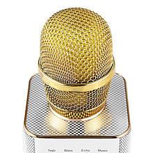 Безпровідний мікрофон Караоке з Чохлом MicGeek Q9