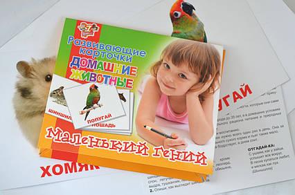 """Набор детских карточек """"Домашние животные"""", 15 шт в наборе"""