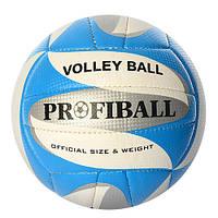 Мяч волейбольный 1103ABC ( 1103ABC(Blue))