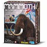 Набор для исследований 4M Скелет мамонта (00-03236), фото 2