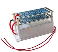 Генератор озона 10 г - 220 В