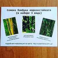 Набор семян бамбука (3 вида)