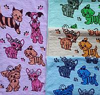 Махровое кухонное полотенце Собачки