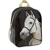 РЮКЗАК PASO Horse 18-303HS