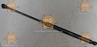 Амортизатор багажника CHEVROLET LACETTI HB (550N) 26-47см (пр-во France-Tech Франция) ЕЕ 102948
