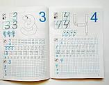 Прописи цифри та знаки 4-6 років з наліпками. (Торсінг), фото 5