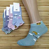 Носки женские короткие деми УЮТ М-03 3D PIG socks хлопок 36-41р.бесшовные с двойной пяткой ассорти 20008635