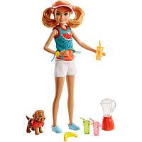 Игровой набор Барби сестричка Стейси Вкусные развлечения Barbie Stacie with Juice and Puppy SKL52-241105