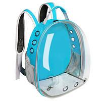 Рюкзак переноска для кошки собаки Голубой, сумка для кота собак и домашних животных прозрачный рюкзаки с