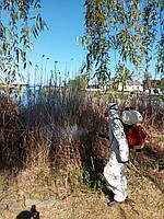 Обработка территорий и помещений от комаров