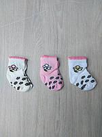 """Носки детские с цветком на девочку размер 0 (3 шт/уп) (3 цв)""""MARI"""" купить недорого от прямого поставщика"""