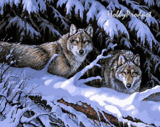VP121 Раскраска по номерам Волки в лесу худ. Миллетт Розмари, фото 2