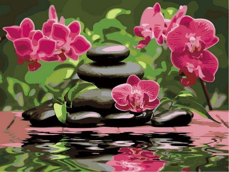 VР535 Раскраска по номерам Лиловые орхидеи