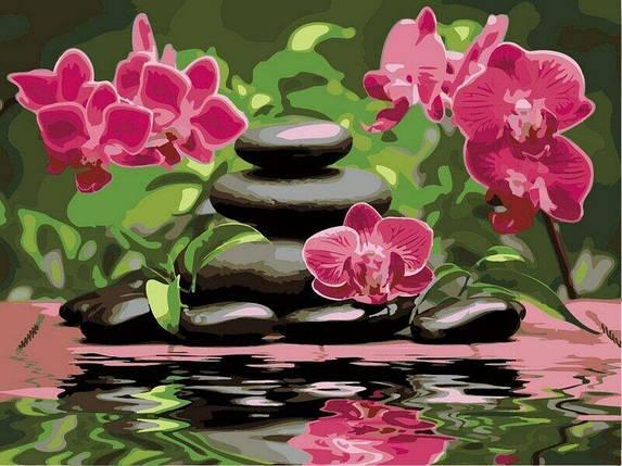 VР535 Раскраска по номерам Лиловые орхидеи, фото 2