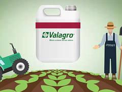 Удобрения Valagro (Валагро)