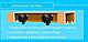 Двери гармошка глухие Клён Канадский (раздвижные, межкомнатные, для душевых, кладовок), фото 4