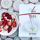 Поштучно  FitLine Pro-B-4 Yo Йогурт  РМ  International  Фитлайн, Германия 50,5 гр пакет на 10 л йогурта, фото 4