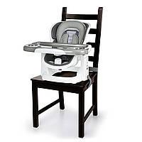 Стильный Стульчик бустер для кормления 2 в 1 Bright Stars «Smart Clean Chair - Bella Teddy »Ingenuity