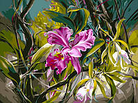 "Картина по номерам ""Прекрасные орхидеи"" худ. Данн-Харр Ви (VP101) Турбо 40 х 50 см"