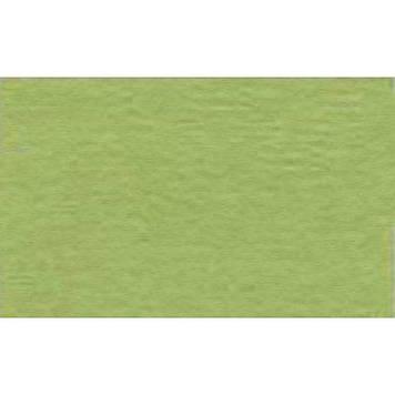 """Папір для пастелі """"Tiziano"""" А4 №11 verduzzo 21х29,7см 160г/м2 №16F4111 (салатовий)(10)"""