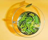 Травяной чай - неоспоримый вкус и невероятная польза