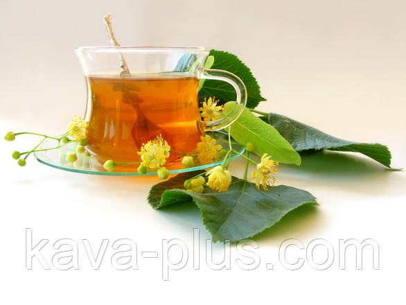 Чай из чебреца
