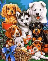 Картина по номерам на холсте с подрамником Озорные щенки