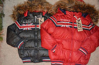 Зимняя куртка на синтепоне для мальчиков 92\98-128 см, фото 1