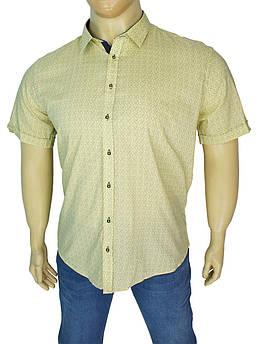 Стильна чоловіча сорочка Negredo BTL-9000 Slim у великому розмірі