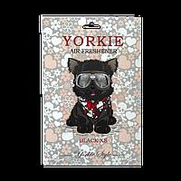 Парфюмированный ароматизатор в авто / гардероб Yorkie Scents Paco Rabanne Black XS, фото 1