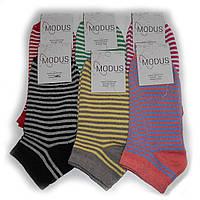 Женские носки Modus - 7,00 грн./пара (короткие, полоска), фото 1