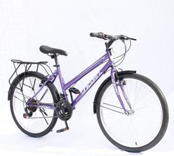 Велосипед Unicorn Traveller 24 железо