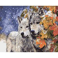 """Акриловая картина по номерам на холсте животные """"Пара волков"""" 40х50, 4 уровень сложности"""