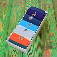 Комплект Шкарпеток в стилі Ralph Lauren Універсальні 36-45