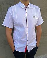 Рубашка мужская белая с коротким рукавом Gold Milano Размер L