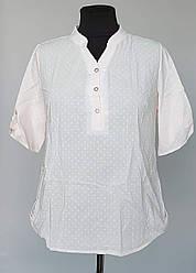 Женская летняя блузка с короткими рукавами