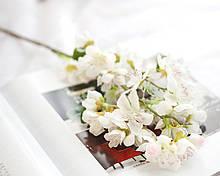 Цветы вишни на ветке, белый, 55 см