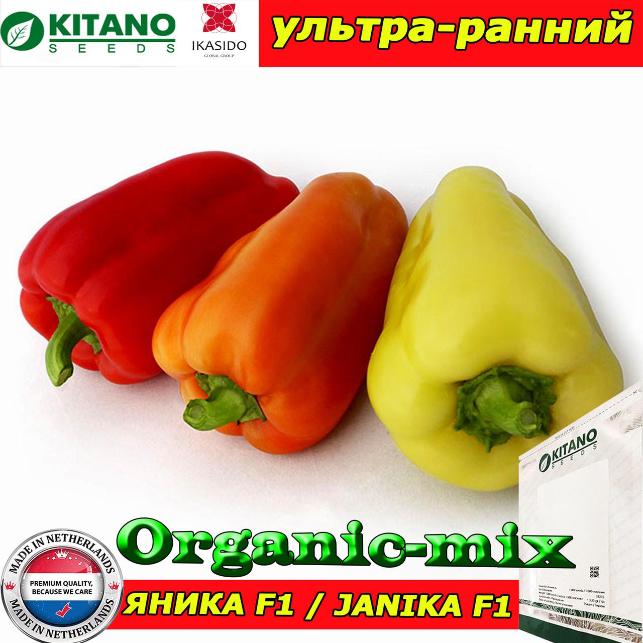 Перец ультра-ранний ЯНИКА F1, пакет 1000 семян, ТМ Kitano Seeds (Нидерланды)
