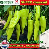 Перец горький КАМПАЙ F1, семена, пакет 1000 семян, ТМ Kitano Seeds (Нидерланды), фото 2