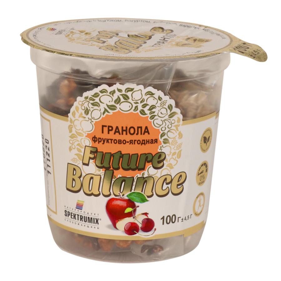 Гранола фруктово-ягодная Future Balance, 100 г