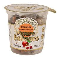 "Гранола фруктово-ягідна ""Future Balance"", 100 г"