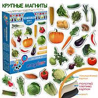 """Набор магнитов """"Овощи"""", в кор. 12*4*17см Украина, Magdum"""