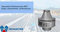 Крышные вентиляторы ВКР: виды, назначение, особенности