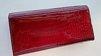 Женский кожаный кошелек Balisa 826-22 т.красный Кожаный женский кошелек на магните, фото 4