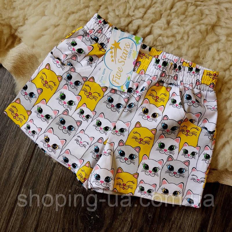 Детские шорты котики Five Stars HD0340-110p