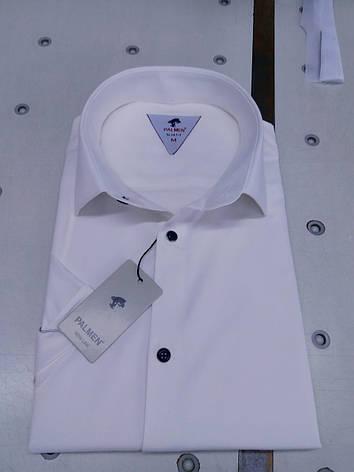 Однотонна сорочка з коротким рукавом Palmen приталеного крою, фото 2