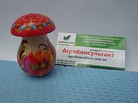 Солонка гриб (маленька) - Петриківський розпис\ Solyanka mushroom (small) - Petrikov painting, фото 1