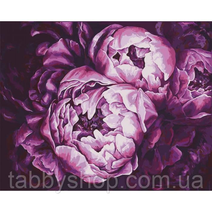 Картина по номерам Идейка - Буйство красок худ. Диана Тучс