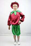 Карнавальный костюм Буряк №2, фото 1